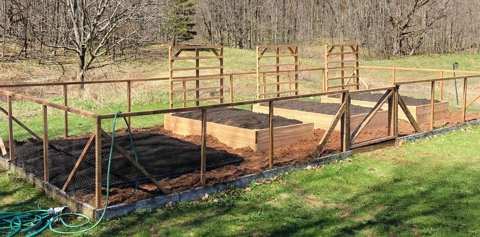 Revitalized Garden