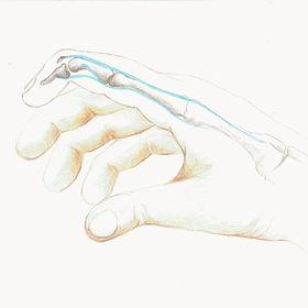 """ד""""ר קובו אצבע פטיש"""
