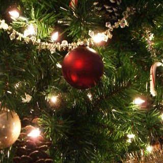 pull-up-christmas-tree-with-lights.jpg