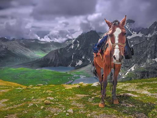 Kashmir Great Lakes : The best trek