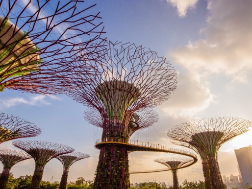 Top handpicked things to do in Singapore