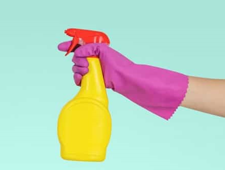 Clean & Organize For Health and Wellness!  Spring Cleaning: Advice from the Experts