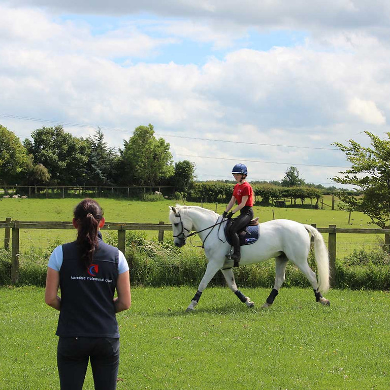Working Hunter Clinic with Jen Brooks