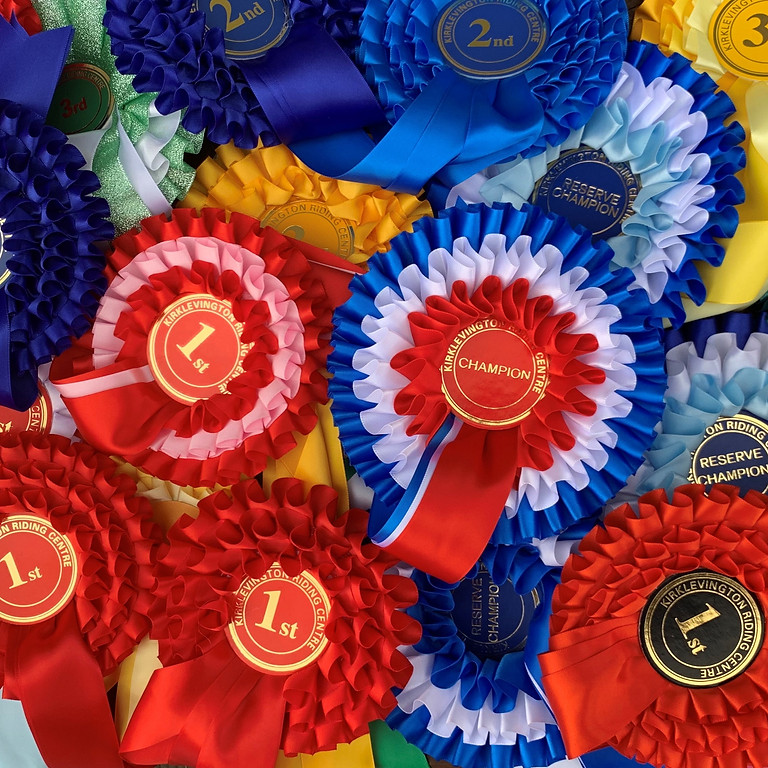 Unaffiliated In Hand, Ridden Showing and Working Hunter Show