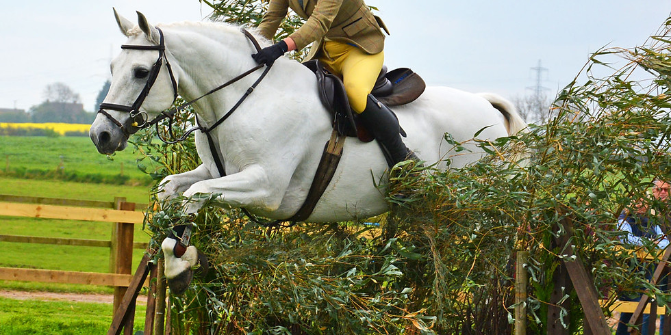 Working Hunter Course Hire