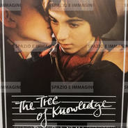KUNDSKABENS TRAE/ THE TREE OF KNOWLEDGE, Directed by Nils Malmros, ( DK), 1981. Film brochure ( pp.2) cm. 21x30 ( closed) cm. 42x30 ( open).