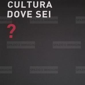 Alfredo Jaar, Cultura dove sei?, 2008. Manifesto cm. 100x70. Offset print on paper.