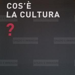 Alfredo Jaar, Cos'è la cultura?,2008. manifesto cm. 100x70. Offset print on paper.