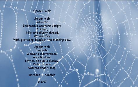 Spider Web Poem