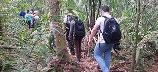 Parque Nacional do Viruá  Caracaraí Rora