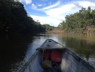 Passeio de barco no rio Branco e Água Boa (Sentido Norte) - 14 de abril - GRUPO LOTADO