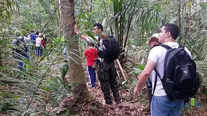 Parque Nacional do Viruá turismo em rora