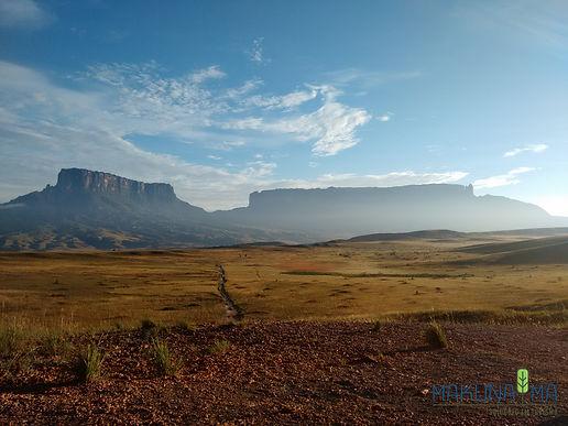 Monte Roraima Contemplativo Gran Savana