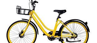Aluguel de bicicleta em Boa Vista.jpg