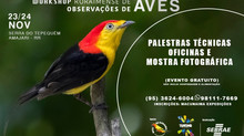 Work Shop de Observação de Aves - 22 a 24/11