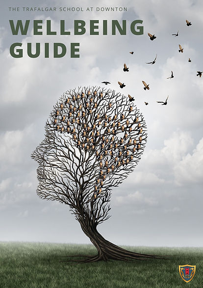 Wellbeing Guide Front Page.jpg