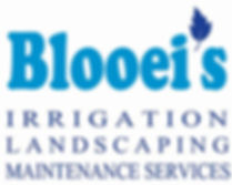 Blooei's logo 010819 FOR WEBSITE copy.jp