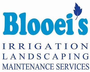 Blooei's logo 010819 FOR WEBSITE copy.jp