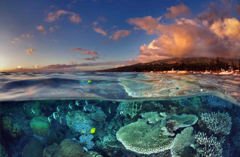 Mer Réunion