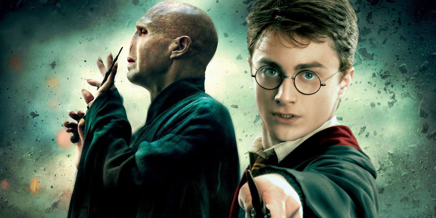 Harry et Voldemort.jpg