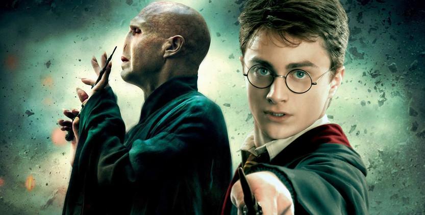 Harry et Voldemort.jpg