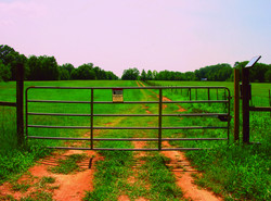 Livestock Pipe Gate