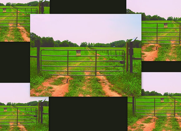 Five Single Gate Systems