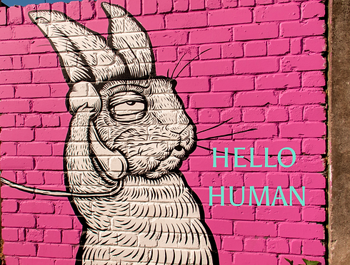 Copy of HELLO HUMAN_edited_edited.png