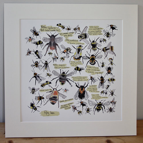 Fifty Bees Mounted Print