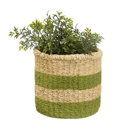 Green Stripe Cement Basket Planter