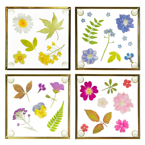 Pressed Flower Glass coaster set of 4