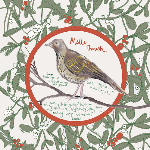 Mistle Thrush Christmas Card