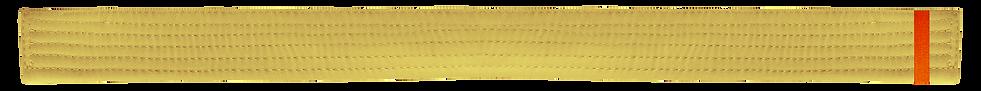Yellow Belt 1 Orange tab.png
