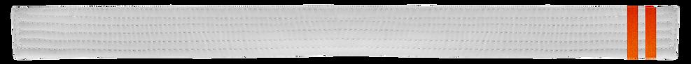 White Belt 2 Orange tab.png
