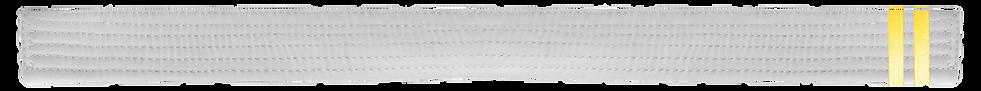 White Belt 2 Yellow tab.png
