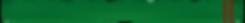 Green Belt 2 Brown tabs.png
