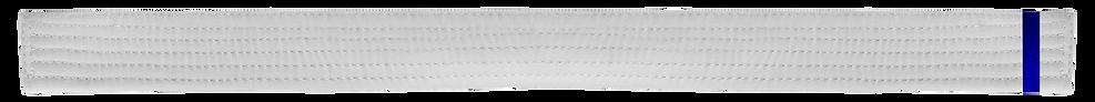 White Belt 1 Blue tab.png