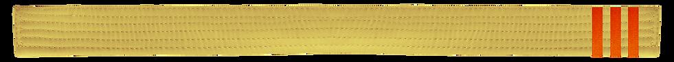 Yellow Belt 3 Orange tab.png