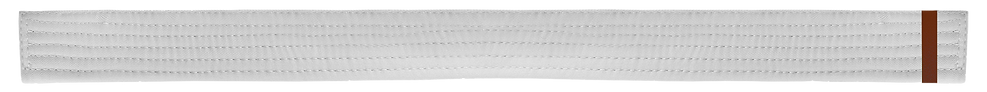 White Belt 1 Brown tab.png