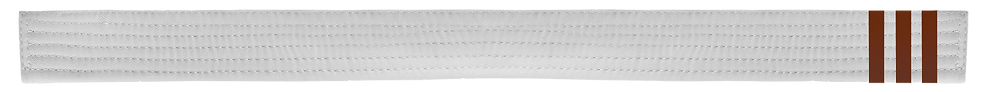 White Belt 3 Brown tabs.png