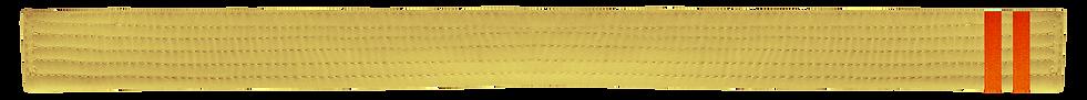 Yellow Belt 2 Orange tab.png