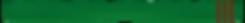 Green Belt 3 Brown tabs.png