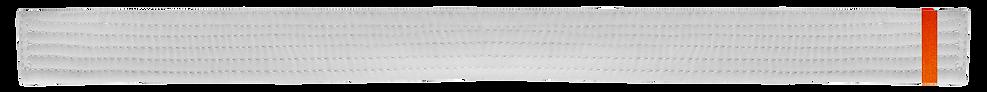 White Belt 1 Orange tab.png