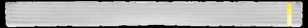 White Belt 1 Yellow tab.png