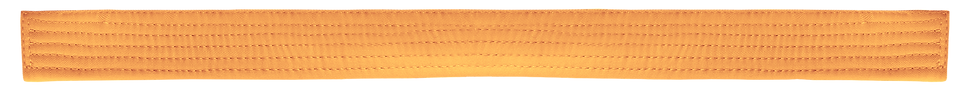 Belt Orange.png