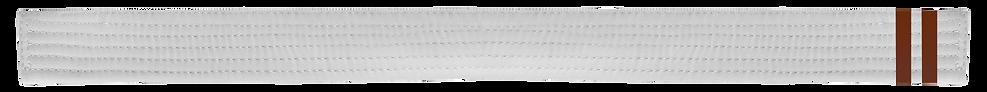 White Belt 2 Brown tabs.png