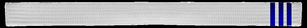White Belt 3 Blue tabs.png