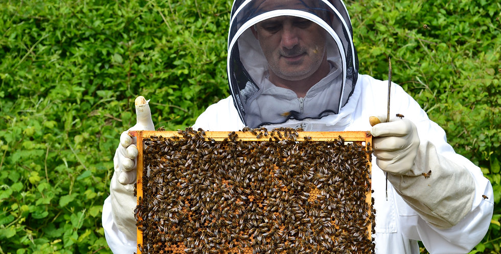 Be a Beekeeper