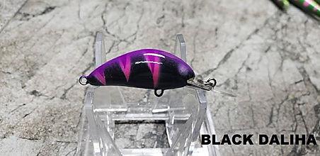 BLACK DALIHA.jpg