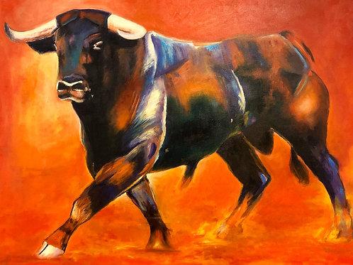 Stier sieht rot